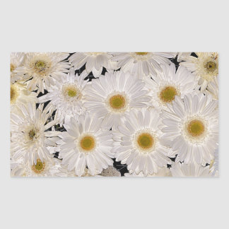 Background of daisy flowers rectangular sticker
