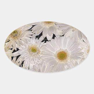 Background of daisy flowers oval sticker