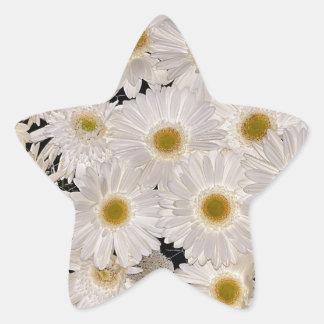Background of daisy flowers star sticker