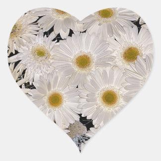 Background of daisy flowers heart sticker