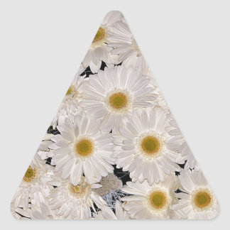 Background of daisy flowers triangle sticker