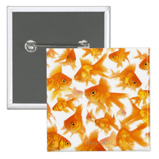 Background Showing a Large Group of Goldfish 15 Cm Square Badge