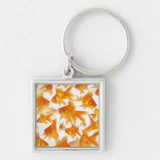 Background Showing a Large Group of Goldfish Key Ring