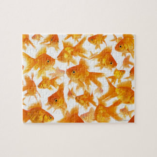 Background Showing a Large Group of Goldfish Puzzles