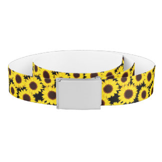 Background with sunflowers belt