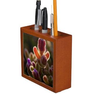 Backlit Colorful Succulent Flower Bud With Rim Desk Organiser
