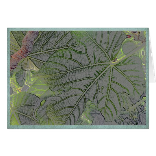 Backlit leaves in a summer garden card