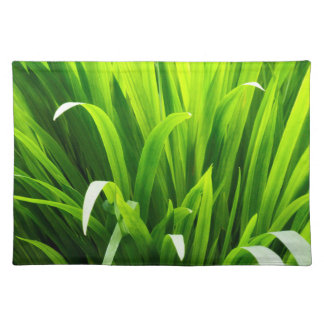 Backlit Leaves in Garden Placemat