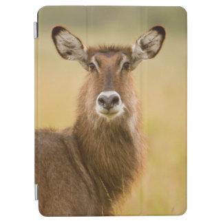 Backlit Portrait Of Female Defassas Waterbuck iPad Air Cover