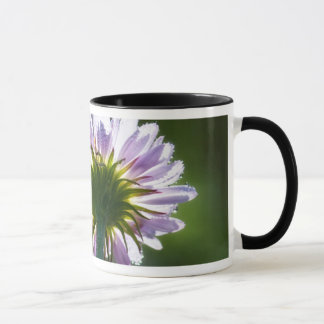 Backlit Purple Wildflower With Dewdrops Mug