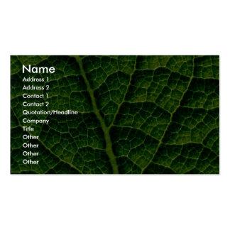 Backlit skunk cabbage leaf texture business card template