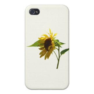 Backlit Sunflower iPhone 4 Cases