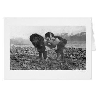 Backpacking Dog Seward, Alaska 1911 Card