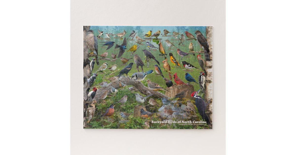 Backyard Birds of North Carolina Jigsaw Puzzle | Zazzle.co.uk