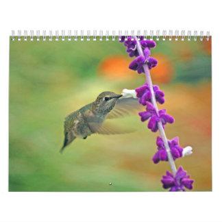 Backyard Hummingbird Calendar
