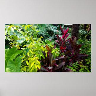 Backyard Jungle Poster