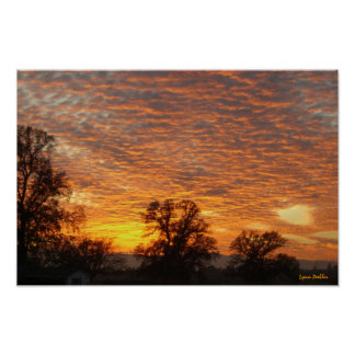 Backyard Sunset #3 Poster