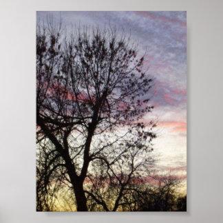 Backyard Sunset Poster
