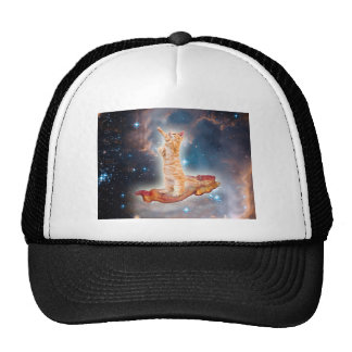 Bacon Surfing Cat in the Universe Cap