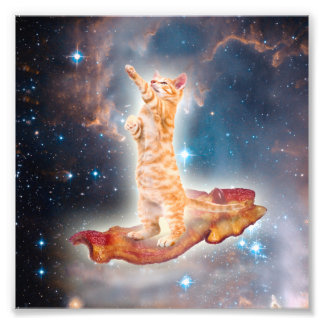 Bacon Surfing Cat in the Universe Photo