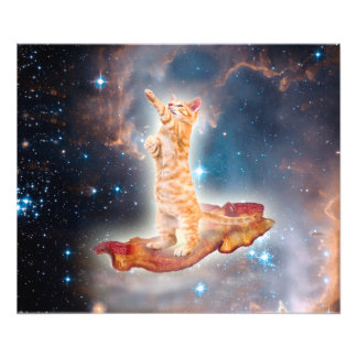 Bacon Surfing Cat in the Universe Photo Print