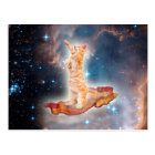 Bacon Surfing Cat in the Universe Postcard