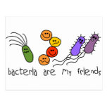 Bacteria are my friends postcard