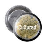 Bacteria Culture Plate Button