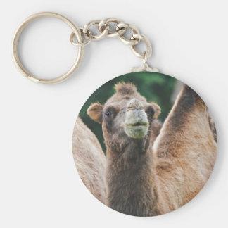 Bactrian Camel Keyring Basic Round Button Key Ring