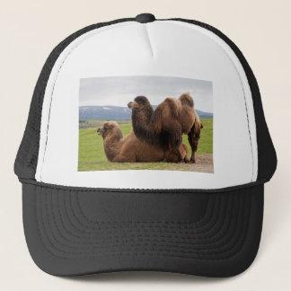 Bactrian Camels Trucker Hat