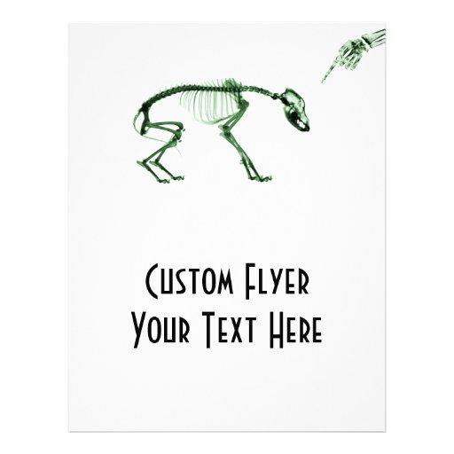 Bad Dog X-ray Skeleton in Green 21.5 Cm X 28 Cm Flyer