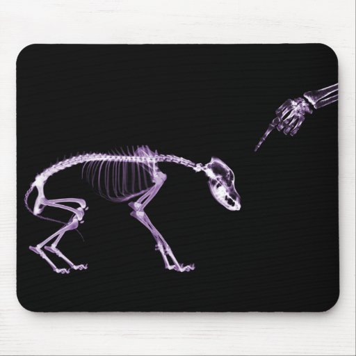 Bad Dog X-ray Skeleton in Purple Mousepads