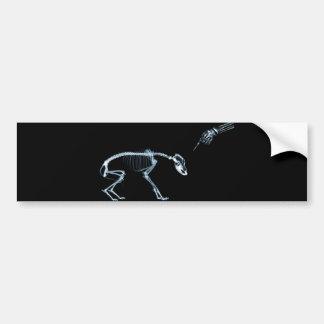 Bad Dog Xray Skeleton Black Blue Bumper Sticker