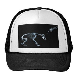 Bad Dog Xray Skeleton Black Blue Cap