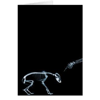 Bad Dog Xray Skeleton Black Blue Greeting Card