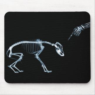 Bad Dog Xray Skeleton Black Blue Mouse Pad