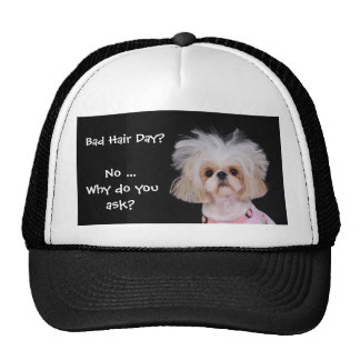 Bad Hair Day? Cap