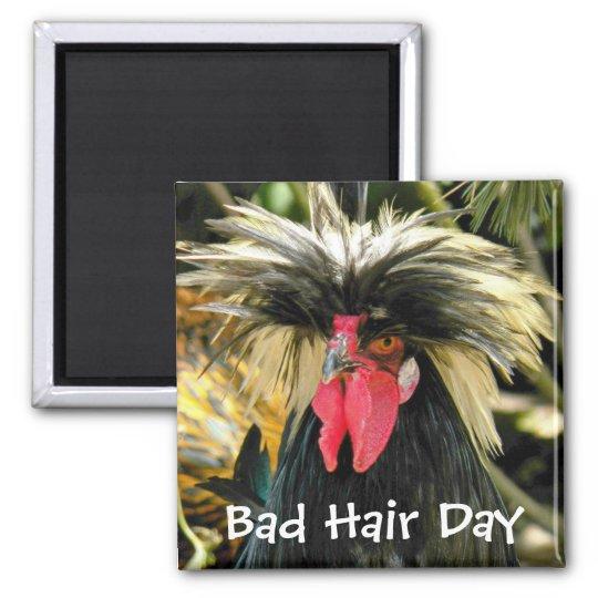 Bad Hair Day Chicken Photo Magnet