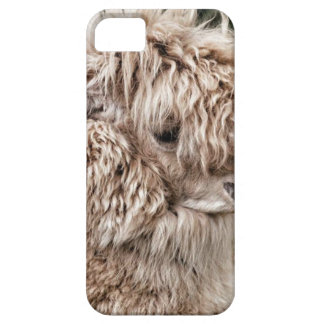 Bad Hair Day Lama Case For The iPhone 5