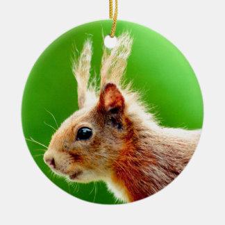 Bad hair day squirrel christmas ornament