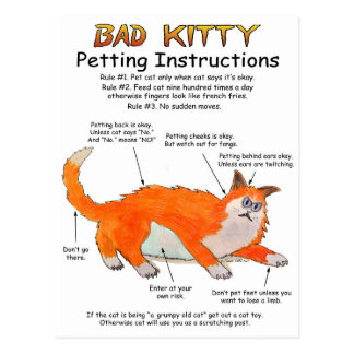 Bad Kitty Petting instructions Postcard