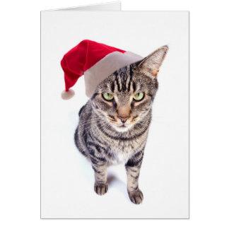 Bad Santa Cat Christmas Card