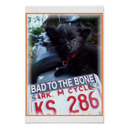 bad to the bone poster