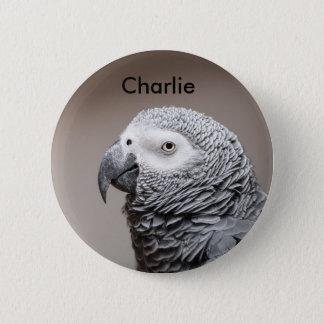 Badge Congo African Grey Gray Parrot
