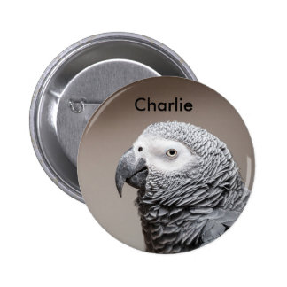 Badge Congo African Grey Gray Parrot