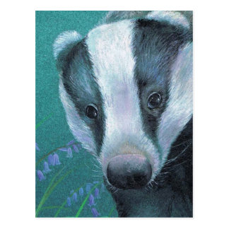 'Badger in the bluebell woods' postcard