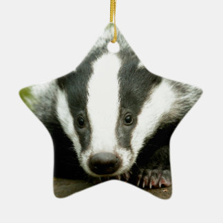 Badger - Stunning pro photo! Ceramic Star Decoration