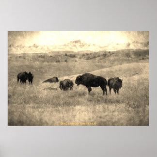 Badlands Bison Print