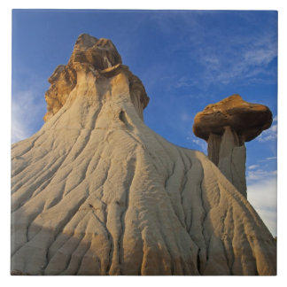 Badlands formations at Makoshika State Park in Tile