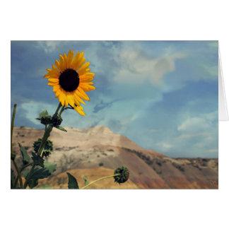 Badlands South Dakota Floral Cards